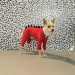 New Dogzilla Costume by American Apparel